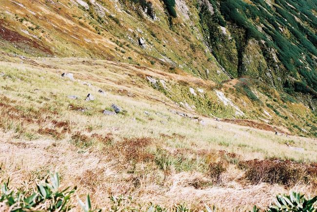 Hiking Nature_collection Film Japan Landscape Olympus 35mm Mountain
