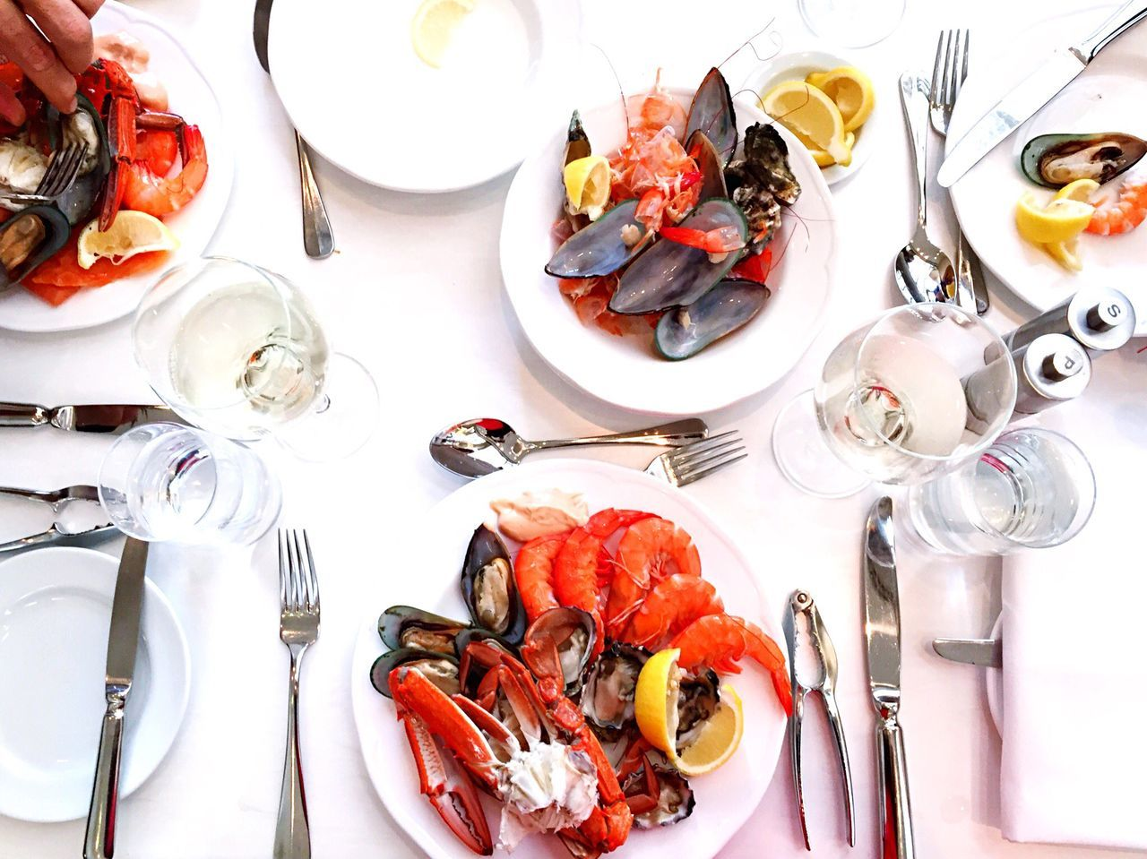 Beautiful stock photos of sydney, Australia, Choice, Clam - Seafood, Crab - Seafood