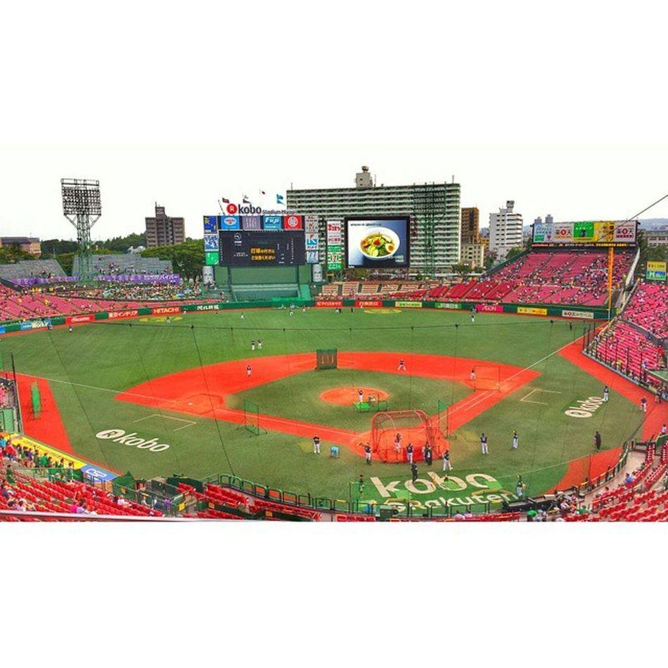 Baseball Stadium Sports