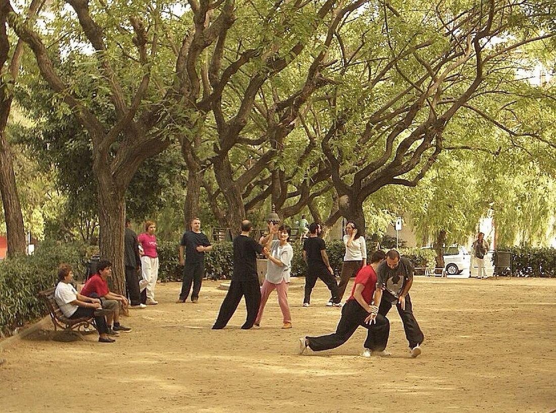 Wingtsun Park Barcelona