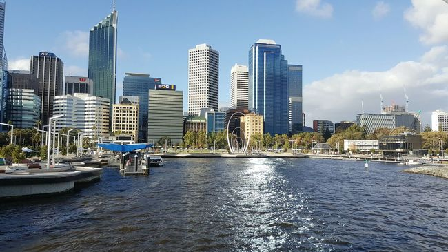 Perth City Perth Australia Perth Australia Perth Skyline Perthlife Cityscape Modern Architecture Built Structure Building Exterior Waterfront Tall - High City Life Water City Summer Sea Outdoors Financial District  Skyscraper Tower Office Building Urban Skyline Tall