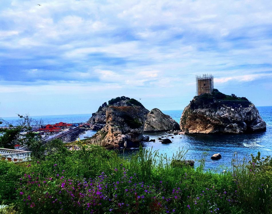 Castle Sea Mountain Cloud Green Flower