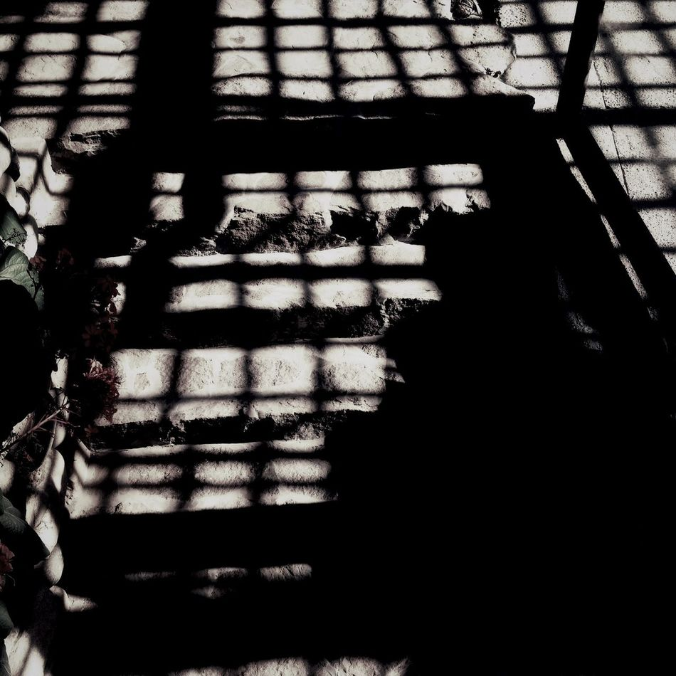 BwOnlyshadow Shadows
