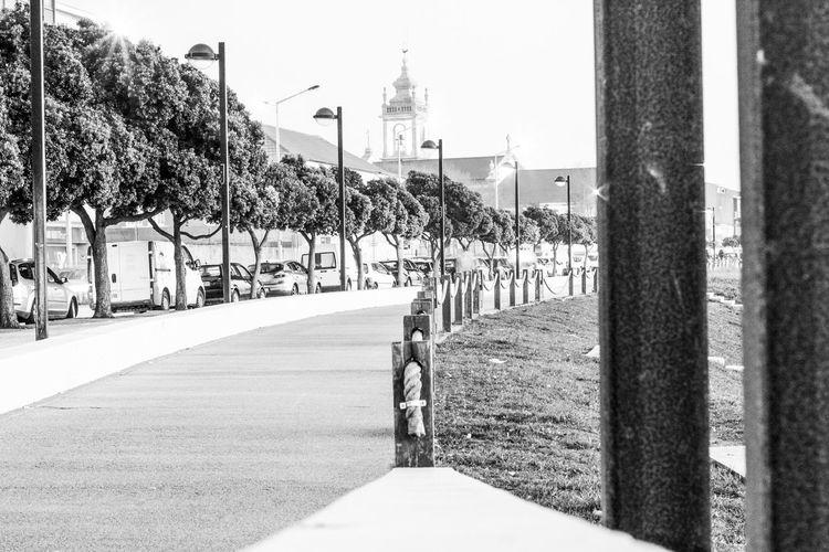 Bike Lane Black And White Day High Contrast Bnw Near The Beach No People Outdoors Póvoa De Varzim Tree