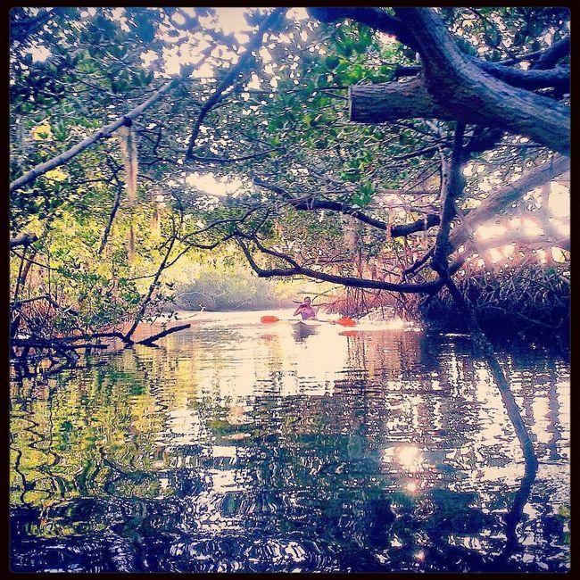 Kayaking Enjoying Nature Robbinson Preserve Ria & Bia