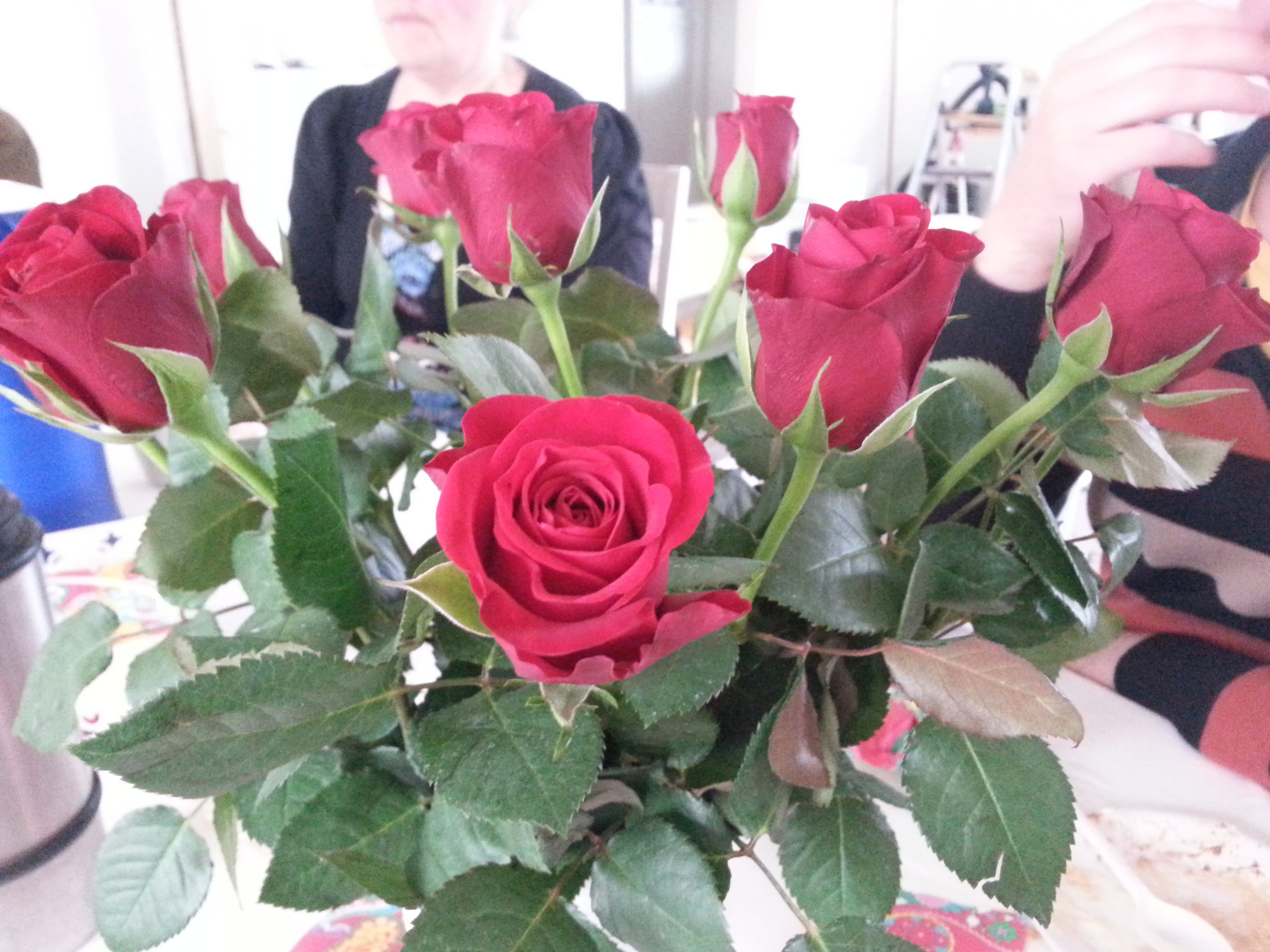 flower, rose - flower, fragility, petal, freshness, flower head, pink color, leaf, indoors, rose, plant, growth, beauty in nature, red, nature, potted plant, vase, bouquet, blooming, close-up