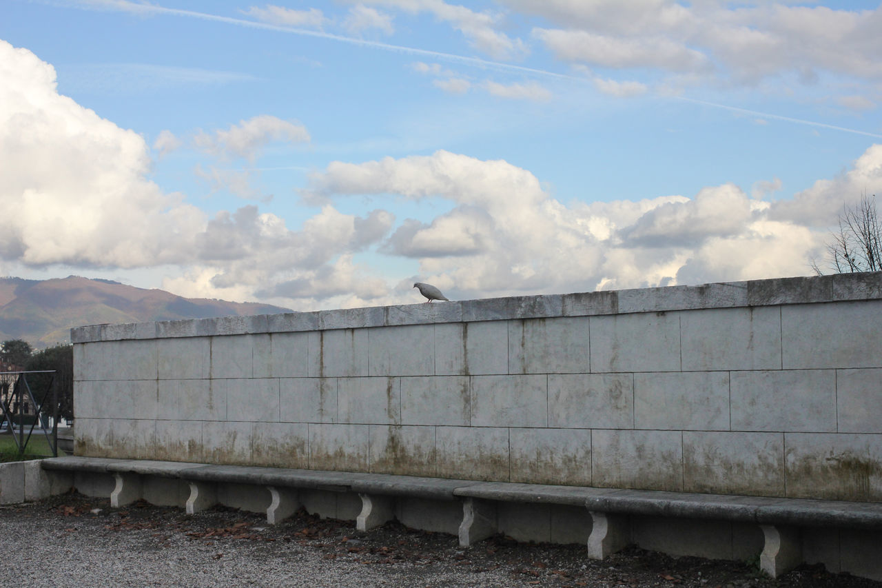 Architecture Chance Encounters Cloud - Sky Landscape Marble Outdoors Pigeon Seat Timeless Streetphotography