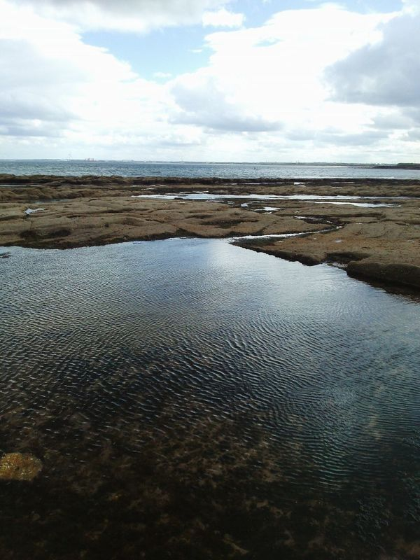 Holiday shot Beach Water Rockpools Ocean View Rocks Waterripples Sky Clouds Seaweed Holiday 2016 Northumberland Newbiggin-by-the-sea Relaxing No People Calming Colour Of Life