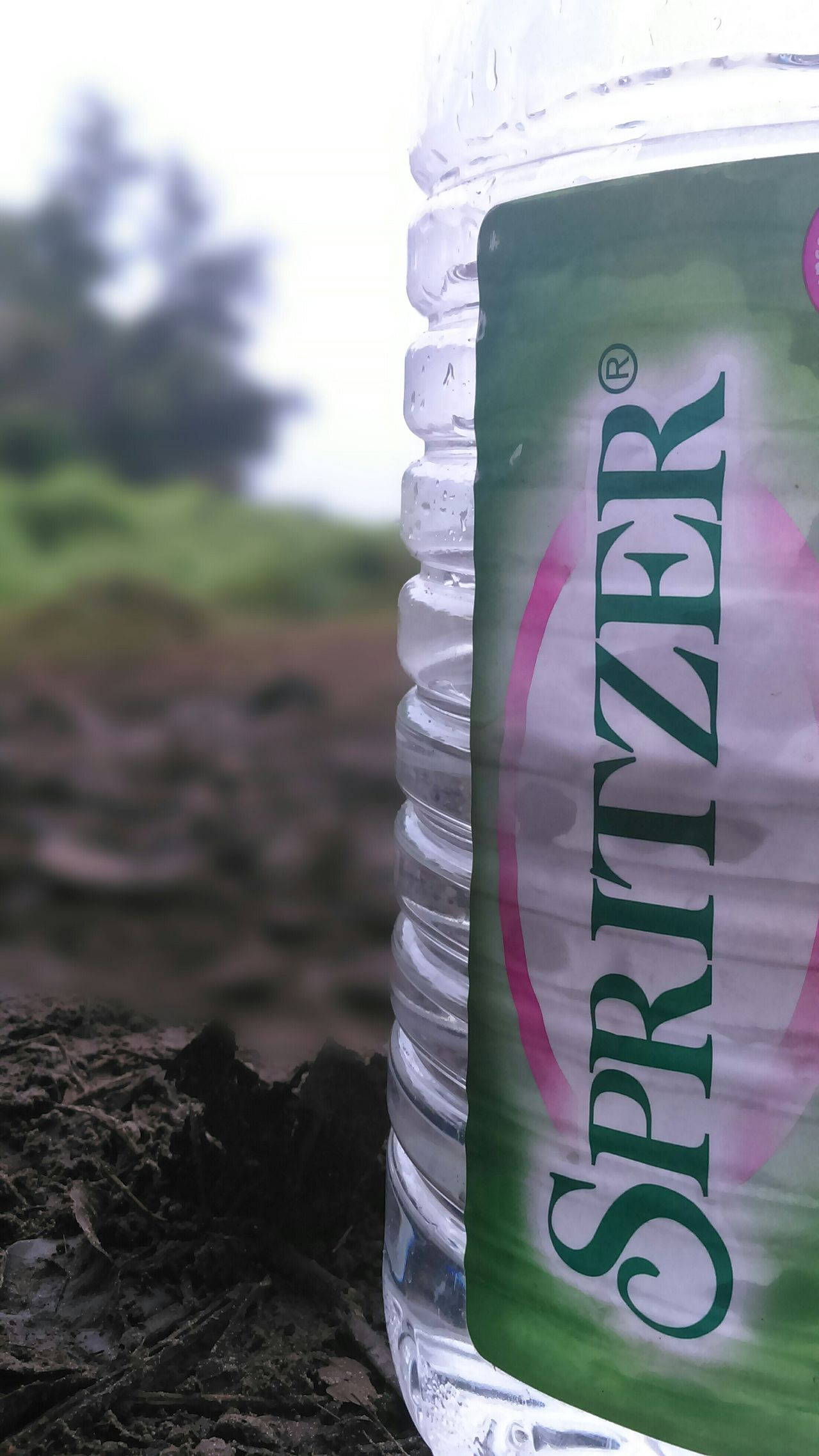 First time using background defocus. Nofilter#noedit Check This Out Howdoyoufeel its rite how i using banckground defocus?