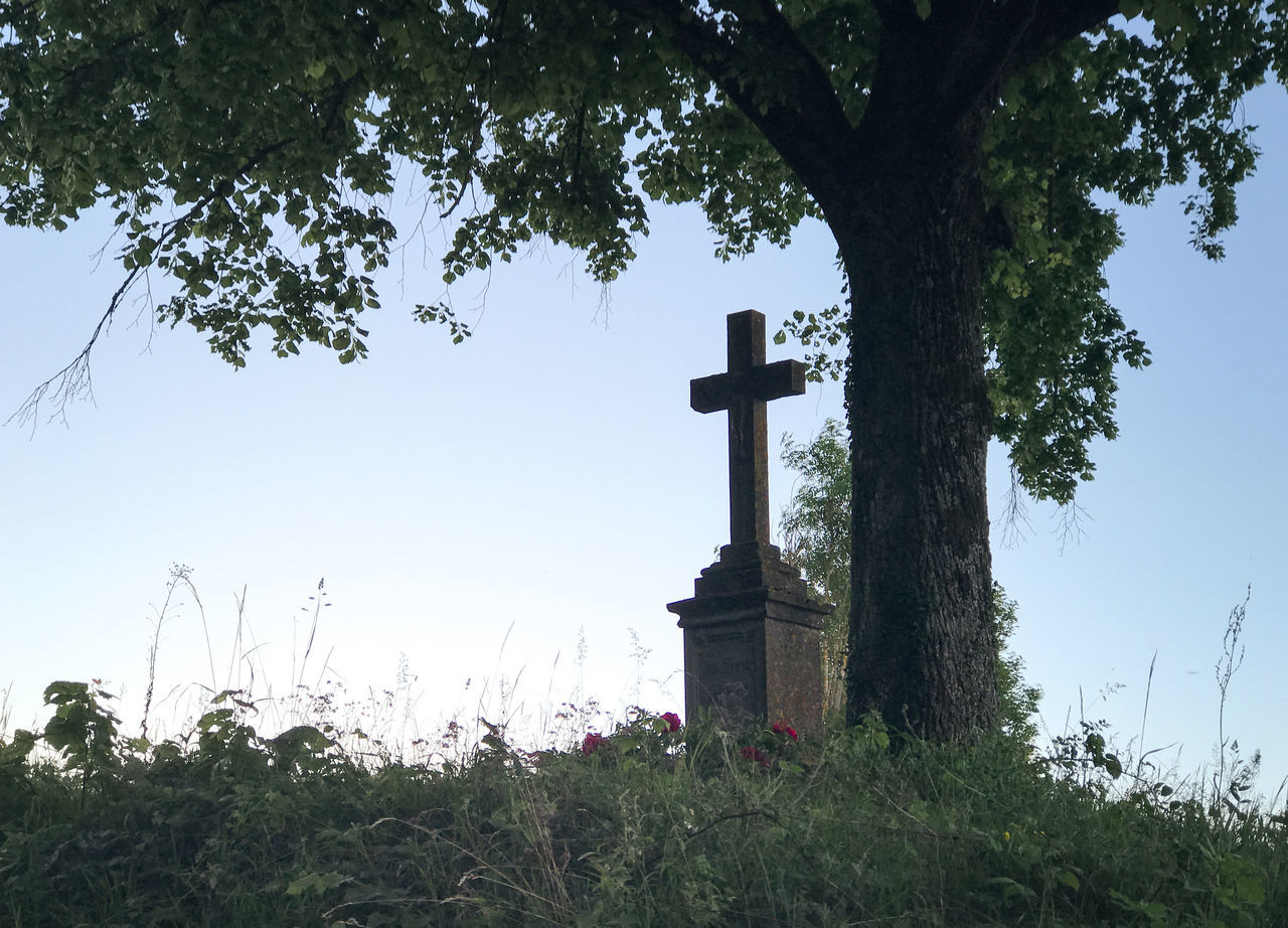 Branch Calm Cemetery Christian Christianity Countryside Cross End Grass Grave Gravestone Graveyard Landscape Memorial Nature Nature Photography Nature_collection Naturelovers Outdoors Religion Rural Spirituality Still Life Tombstone Tree