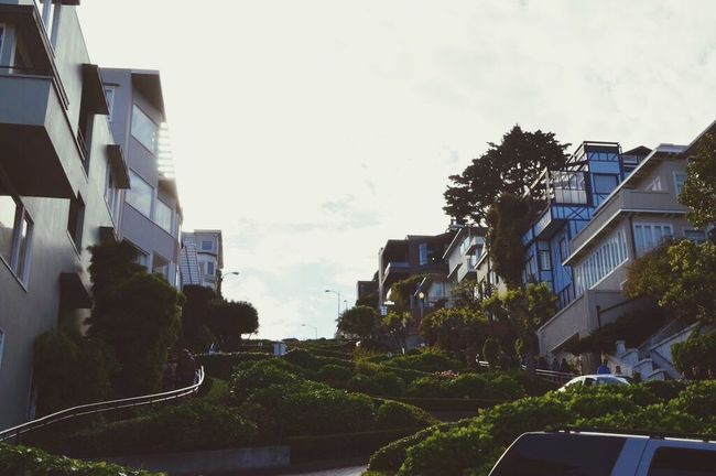 Lombard Street Street Photography Street View Bright Sky Hairpin Turns Steep Hill Mesmerizing Bushes And Flowers San Francisco Spring Beautiful California