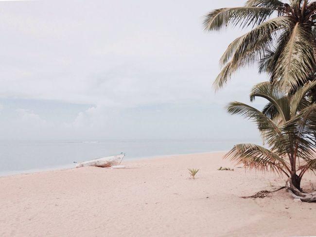 Playa Colibrí Caribbean Dominican Republic Beach