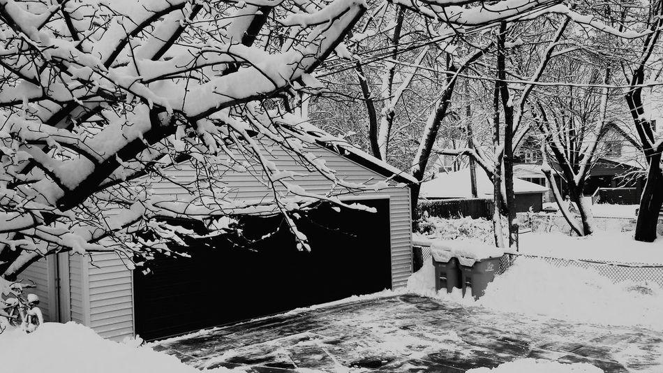 Snow ❄ Awhile Back