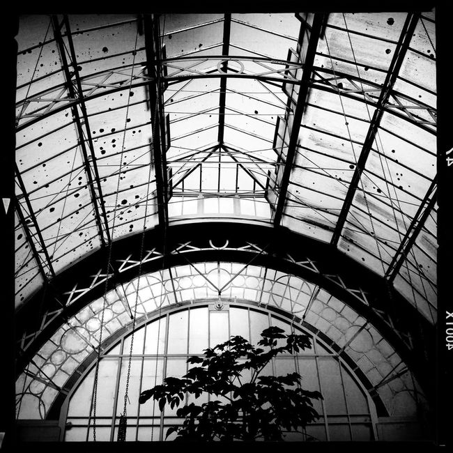 Reaching for the glass ceiling Blackandwhite Architectural Detail Architecture_bw EyeEm Best Shots - Black + White