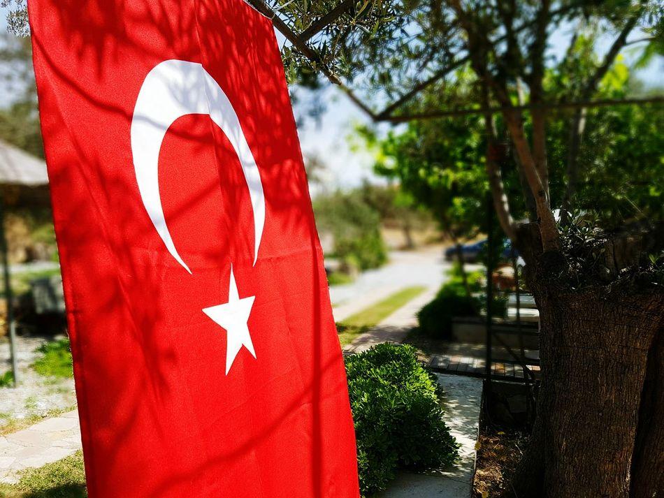 Cunda Island Kirmizibeyaz Bayrak Flags In The Wind  Quality Time Enjoying Life Relaxing Turkey Balikesir First Eyeem Photo