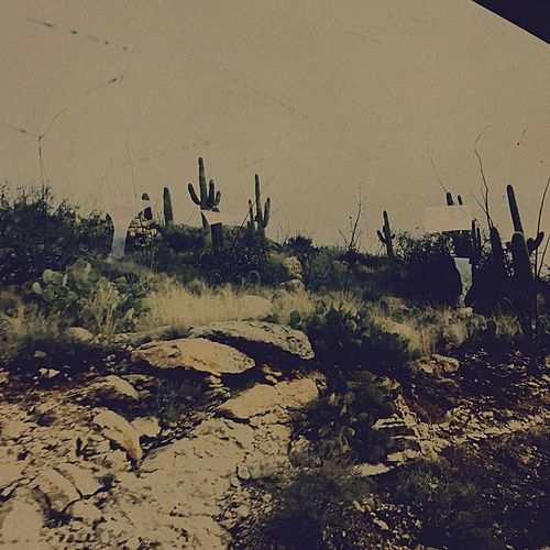 👽 There Is No Arizona First Eyeem Photo