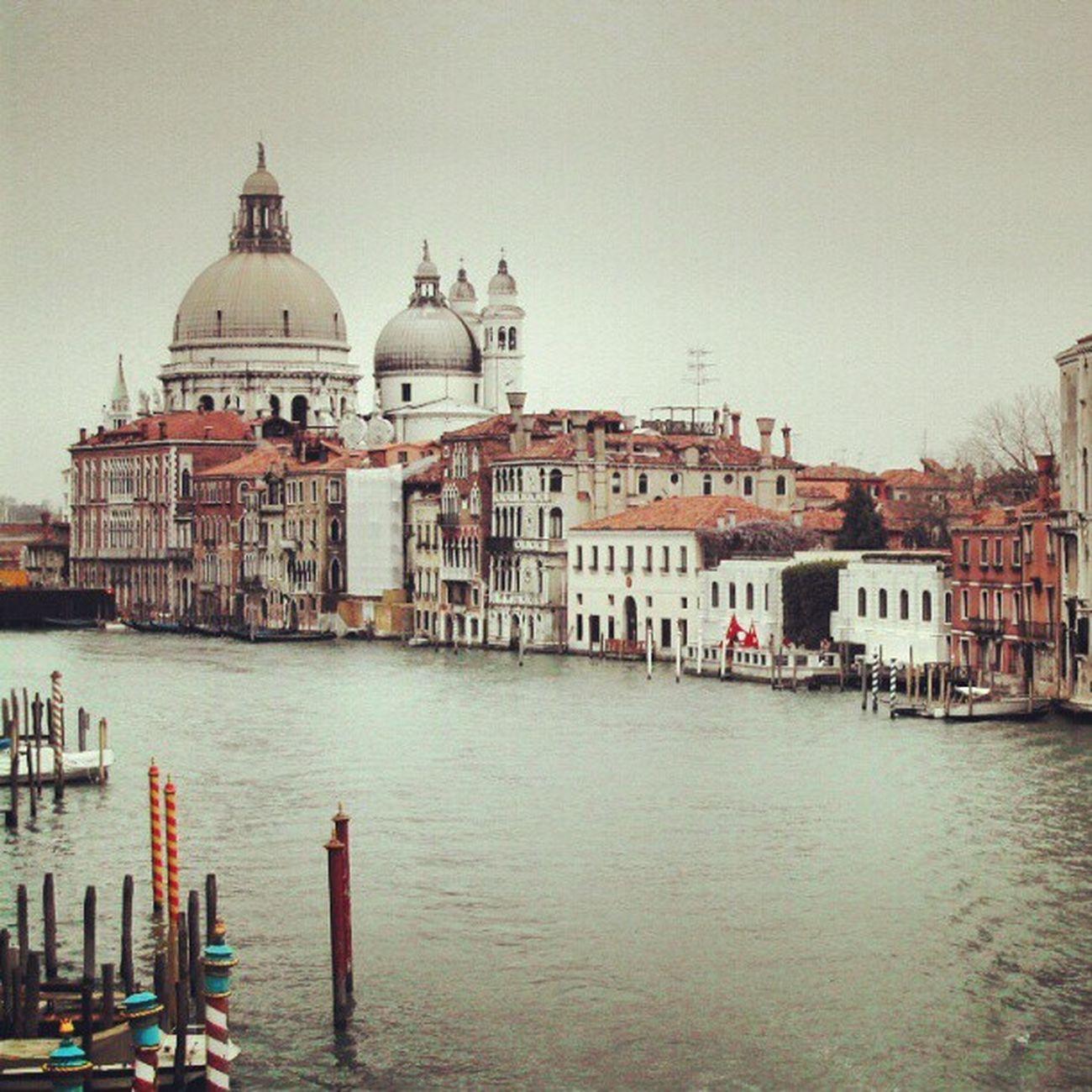 #venice #house #water #igers #igfamos #instagood Water Venice House Igers Instagood Igfamos