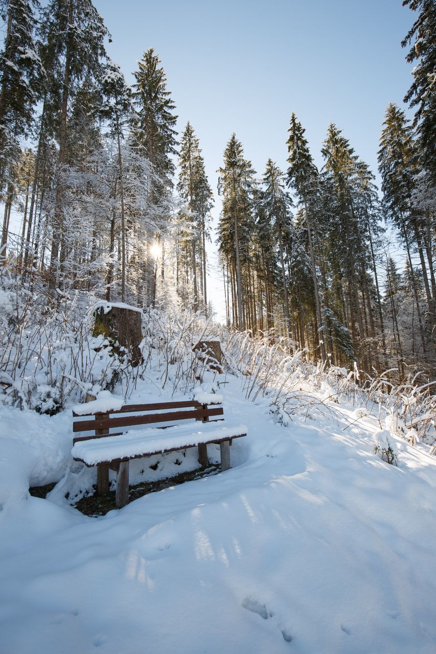 snow, winter, cold temperature, weather, nature, white color, tranquil scene, tranquility, tree, beauty in nature, scenics, frozen, outdoors, day, powder snow, no people, landscape, ski lift, sky