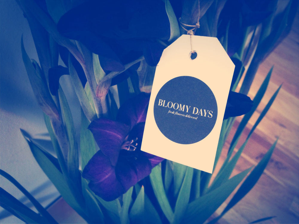 Bloomy Days at EyeEm HQ by Gen Sadakane