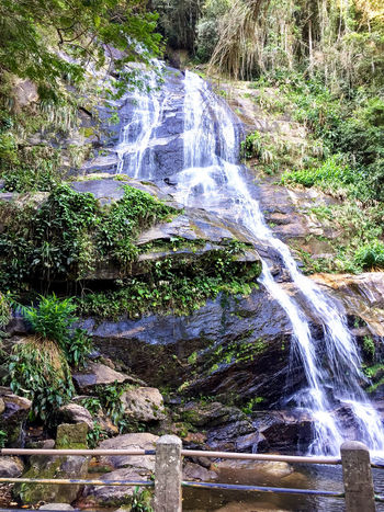 Water Fall Taunay, Cascatinha Taunay Brazil Rio De Janeiro Rio De Janeiro Eyeem Fotos Collection⛵ Rock Rock Formation Tijuca's Forest Beauty In Nature Day Forest Forest Photography Forest Waterfall Freshness Nature No People Rio De Janeiro, Brazil Rock - Object Rocks Rocks And Water Rocky Mountains Scenics Tranquil Scene Tree Water Waterfall