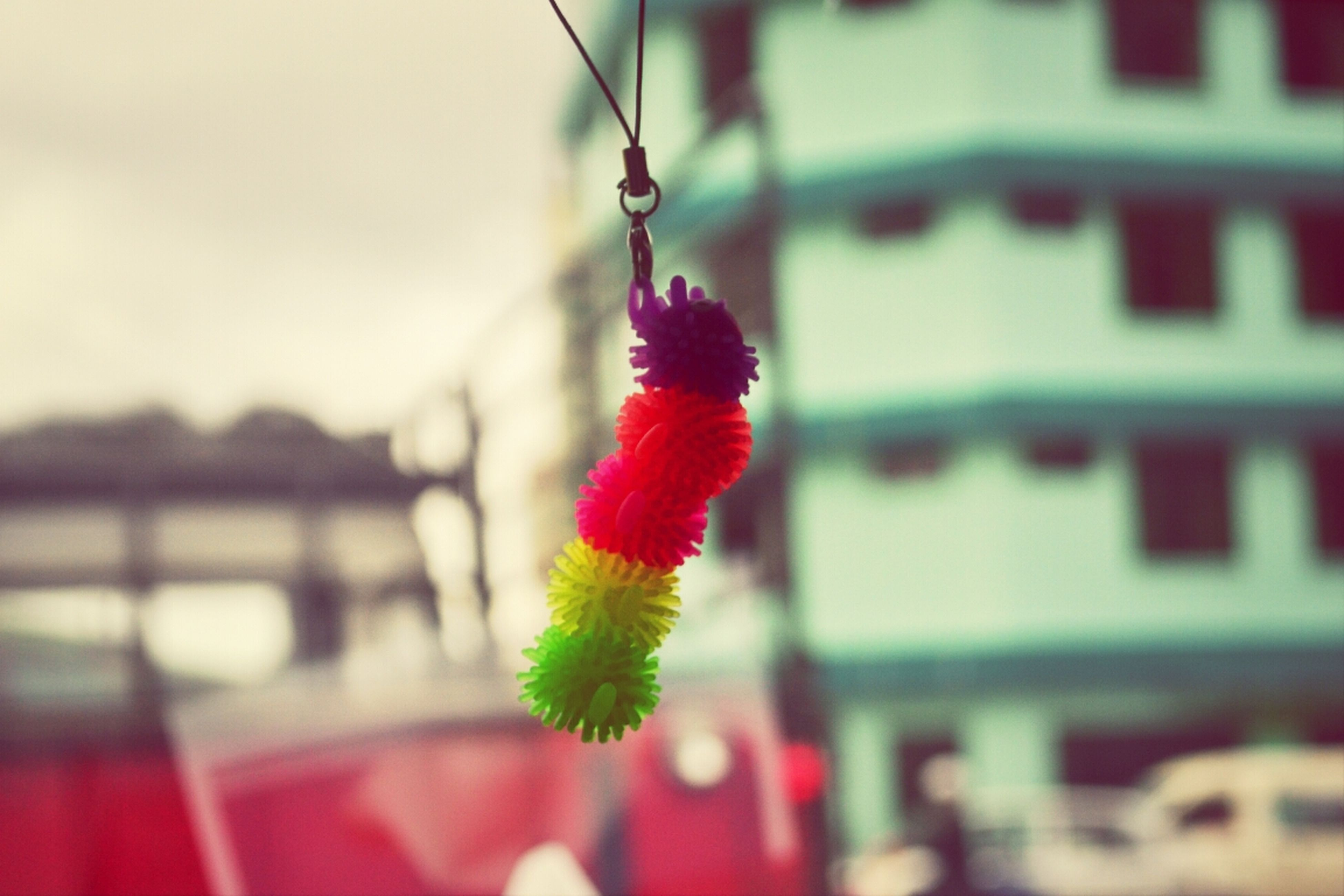 red, focus on foreground, selective focus, bird, close-up, one animal, animal themes, multi colored, hanging, flower, day, no people, outdoors, built structure, architecture, decoration, side view, perching, pink color