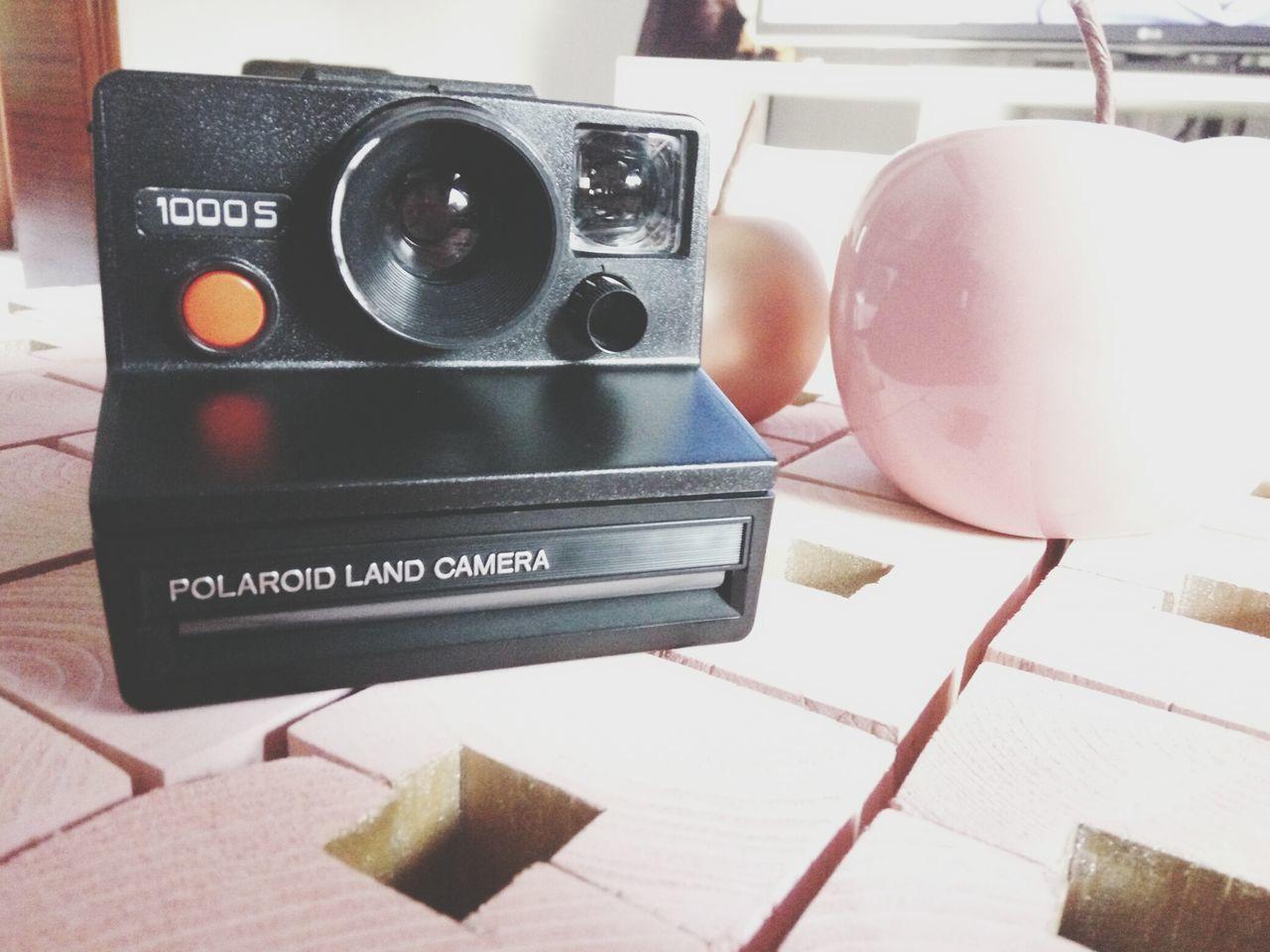 Another Polaroid , welcome to 1000S ! Polaroid 1000 Polaroid 1000s Polamania Polaroids
