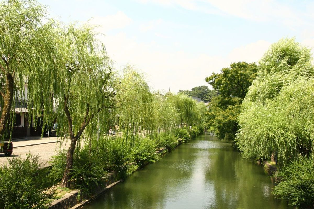 Japan Kurashiki Water Reflection Tranquility Sky Plant Nature Tranquil Scene Beauty In Nature Green Canal Day Outdoors Idyllic Standing Water Clouds Grass Landscape