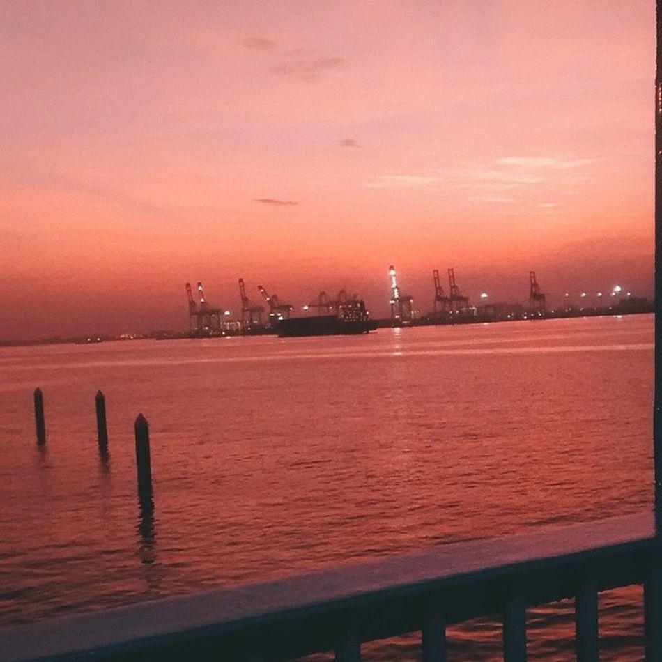 Selamat pagi zirafah-zirafah pelabuhan! Vscocam E5