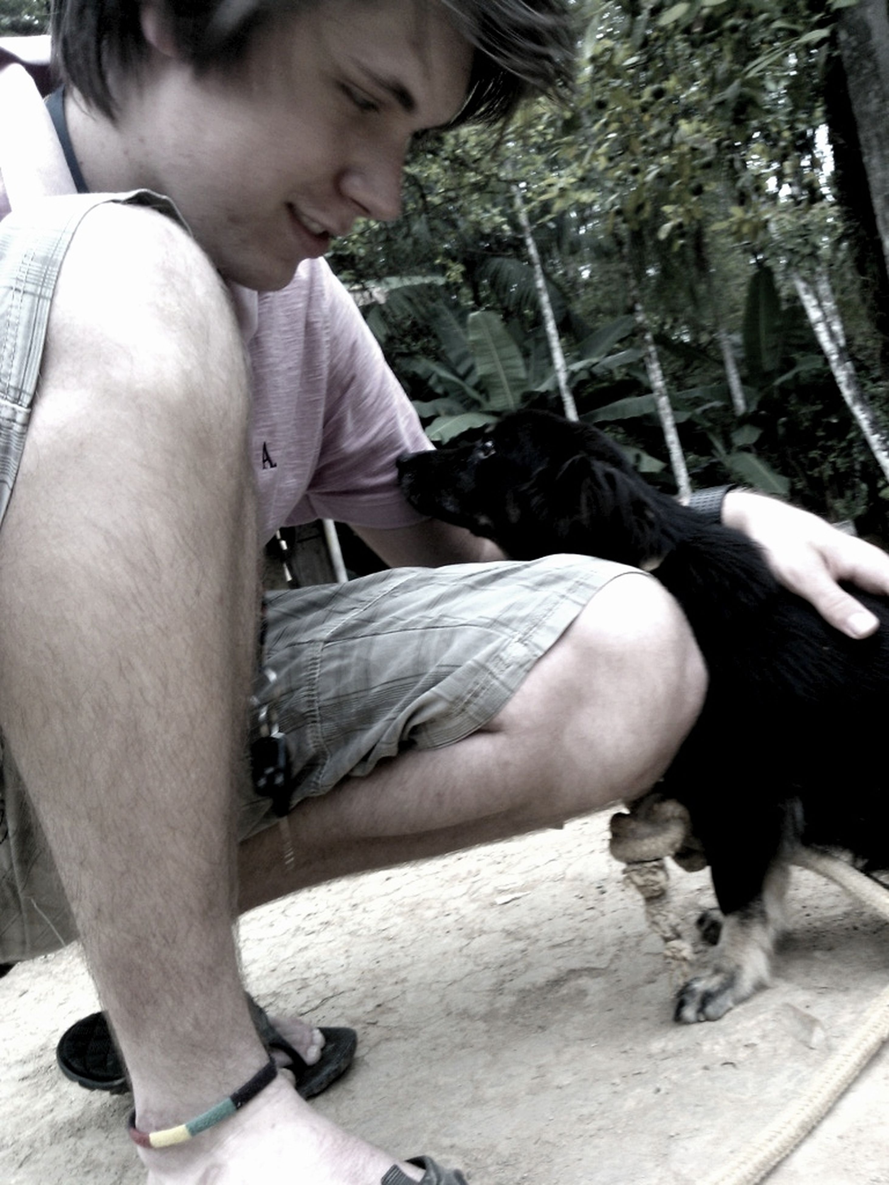 lifestyles, animal themes, leisure activity, person, childhood, casual clothing, one animal, boys, elementary age, pets, togetherness, cute, pet owner, full length, bonding, high angle view, holding