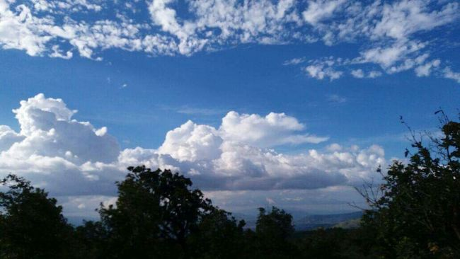 Sky Blue Tranquility Cloud - Sky Nature Day Tree Beauty In Nature Cloud High Section Majestic Eatr Honduras