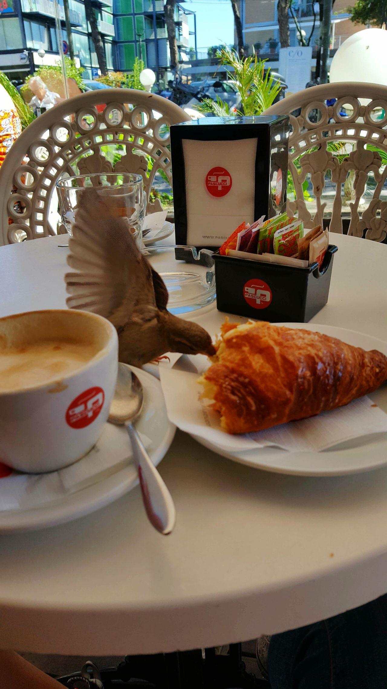 Colazione Rimini