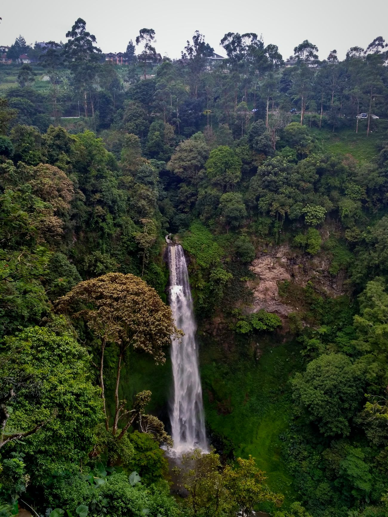 Tree No People Nature Green Color Outdoors Day Plant Growth Water Beauty In Nature Scenics Sky Waterfall Waterfalls And Calming Views  Waterfalls💦 Capture The Moment Captured Moment Nature Tree