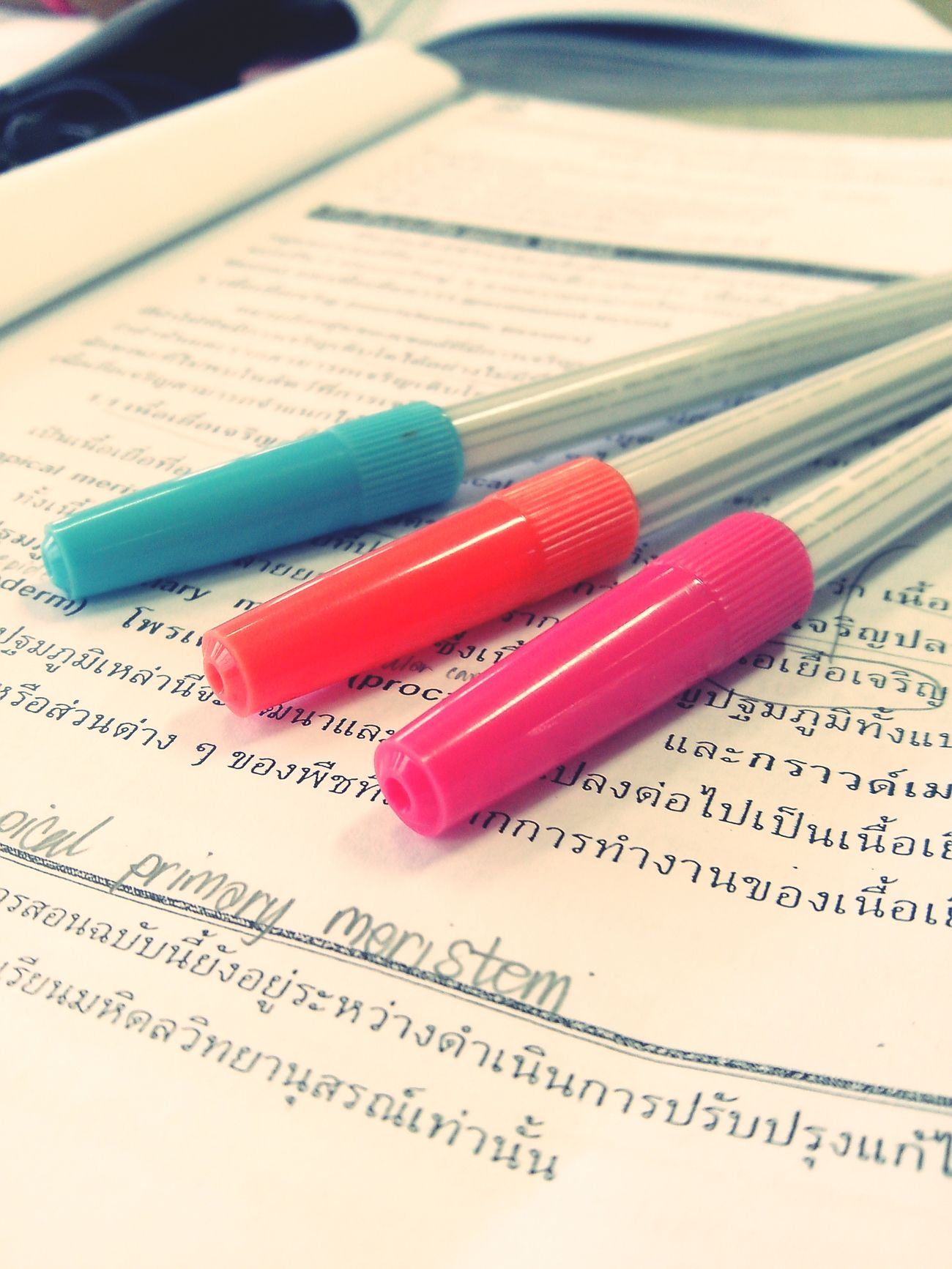 Write anything you think.∩__∩