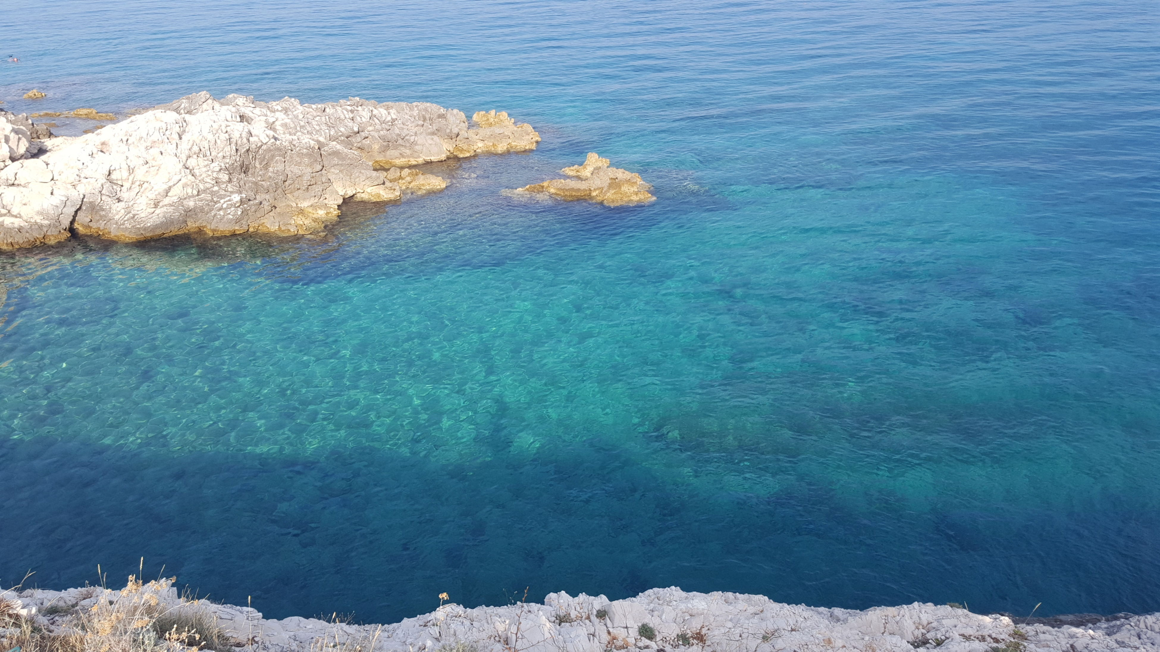 blue, sea, no people, water, nature, beauty in nature, day, scenics, outdoors, underwater, sky, undersea