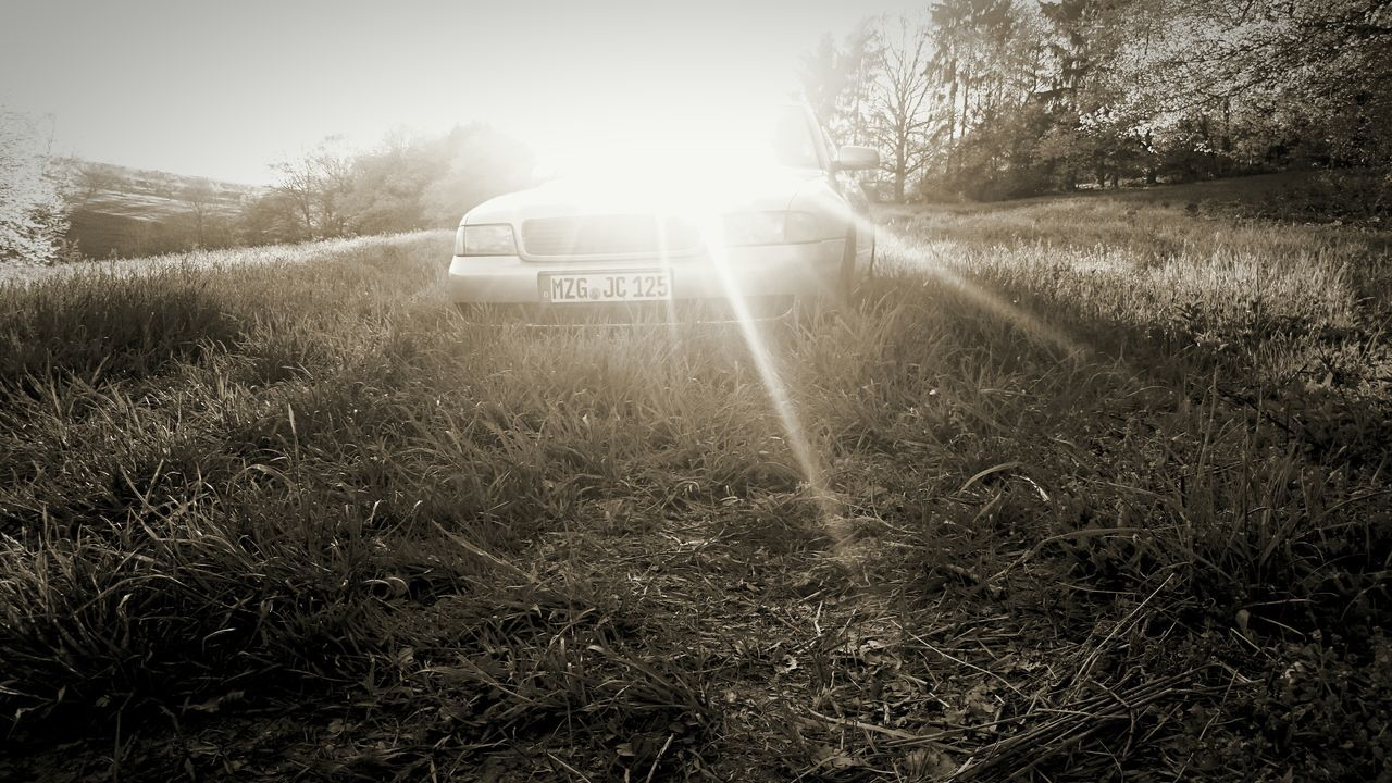 transportation, mode of transport, field, land vehicle, grass, sunlight, car, no people, day, outdoors, nature