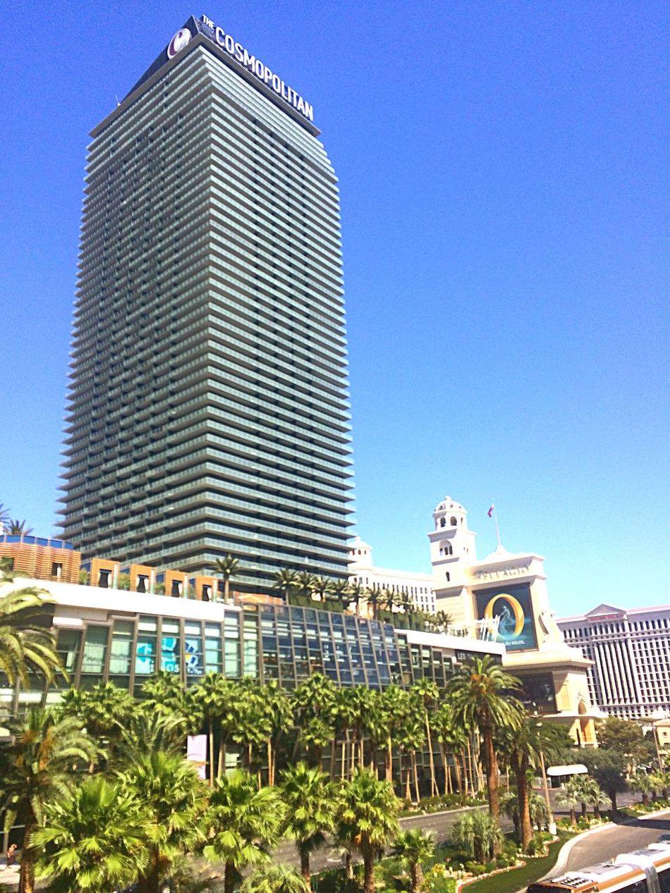 コスモポリタン ラスベガス ホテル 宿泊 やっぱり アリア の方がいい Lasvegas Cosmopolitanlasvegas Hotel
