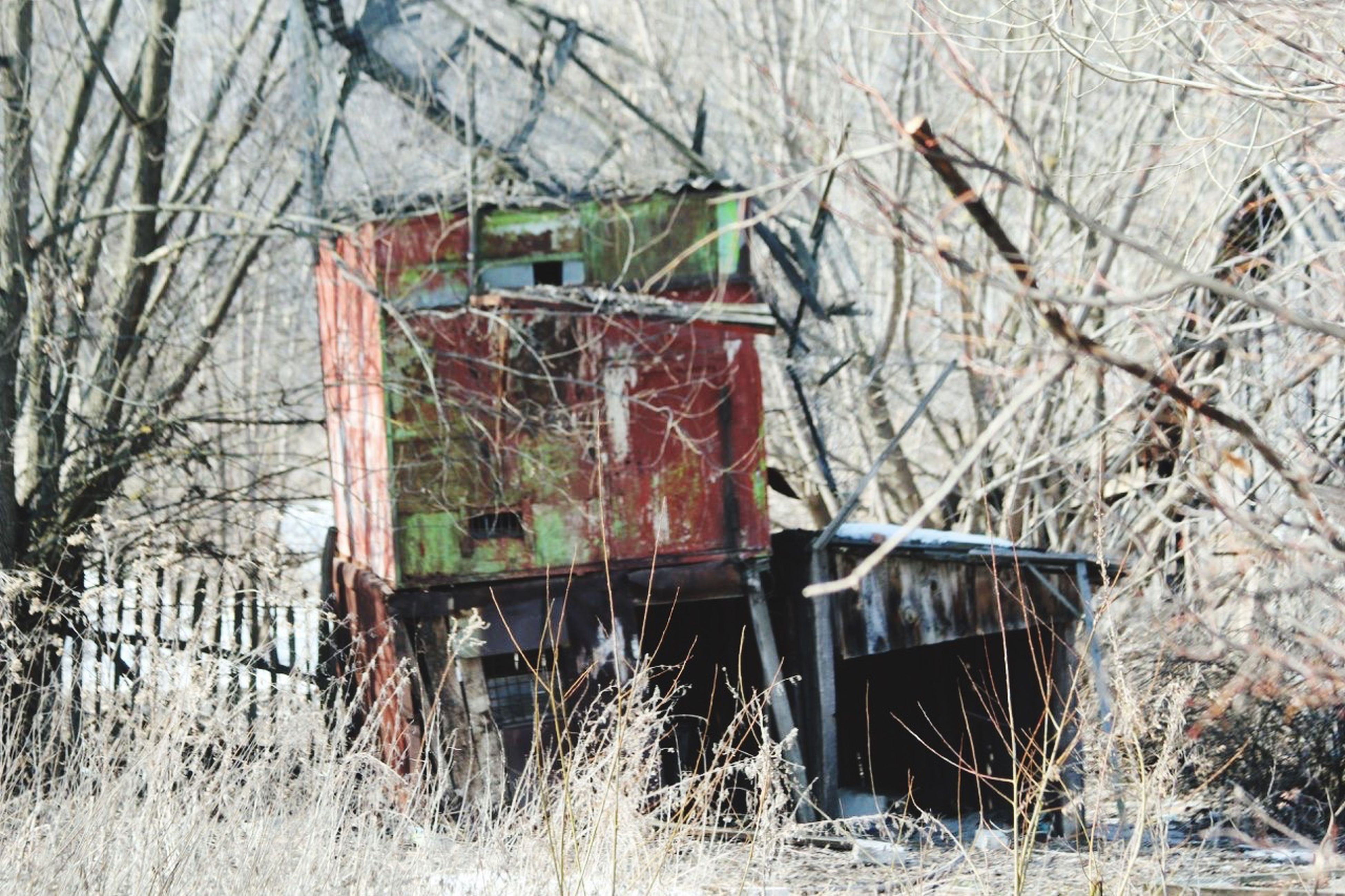 abandoned, obsolete, damaged, old, deterioration, run-down, built structure, tree, house, wood - material, architecture, bare tree, building exterior, weathered, bad condition, field, broken, destruction, day, no people