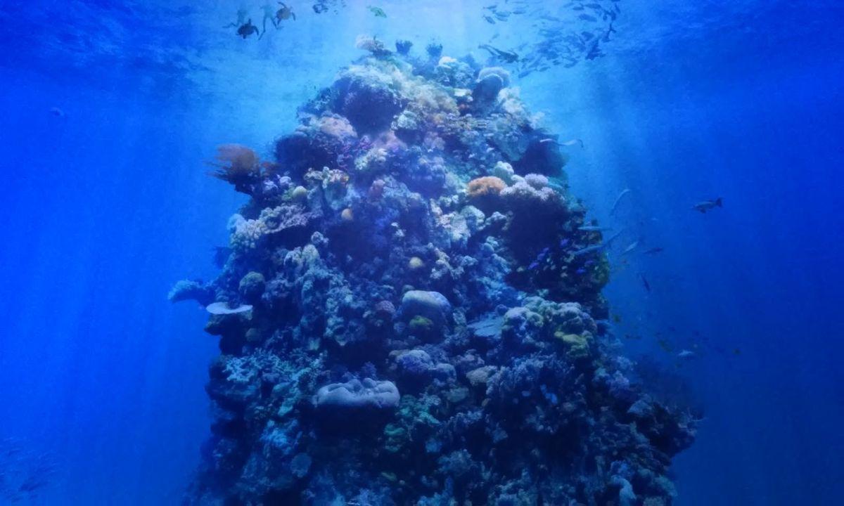 Panometer Leipzig Great Barrier Reef Underwater