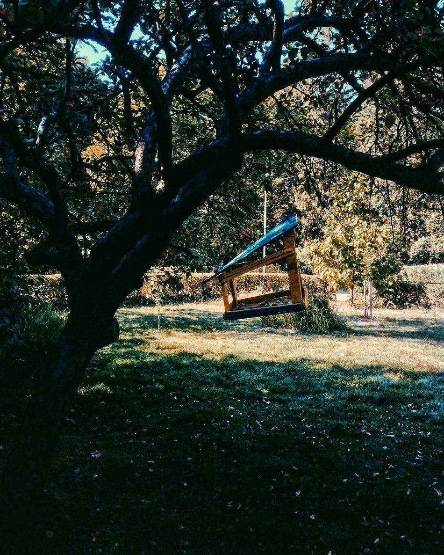 Годівниця Trees Garden VSCO Ukraine Vscocam Lviv Lvivblog Vscolviv Goodday Day Nature Vscogood Vscogram Lviv1256 Lvivforyou Lvivgo Lviv, Ukraine Lvivgram Vscoua