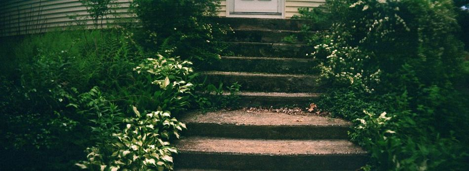 The Way Forward Plant Outdoors No People Steps Steps And Staircases Garden Path Steps Country House Film Sprocket Rocket Panorama Country Life Koduckgirl