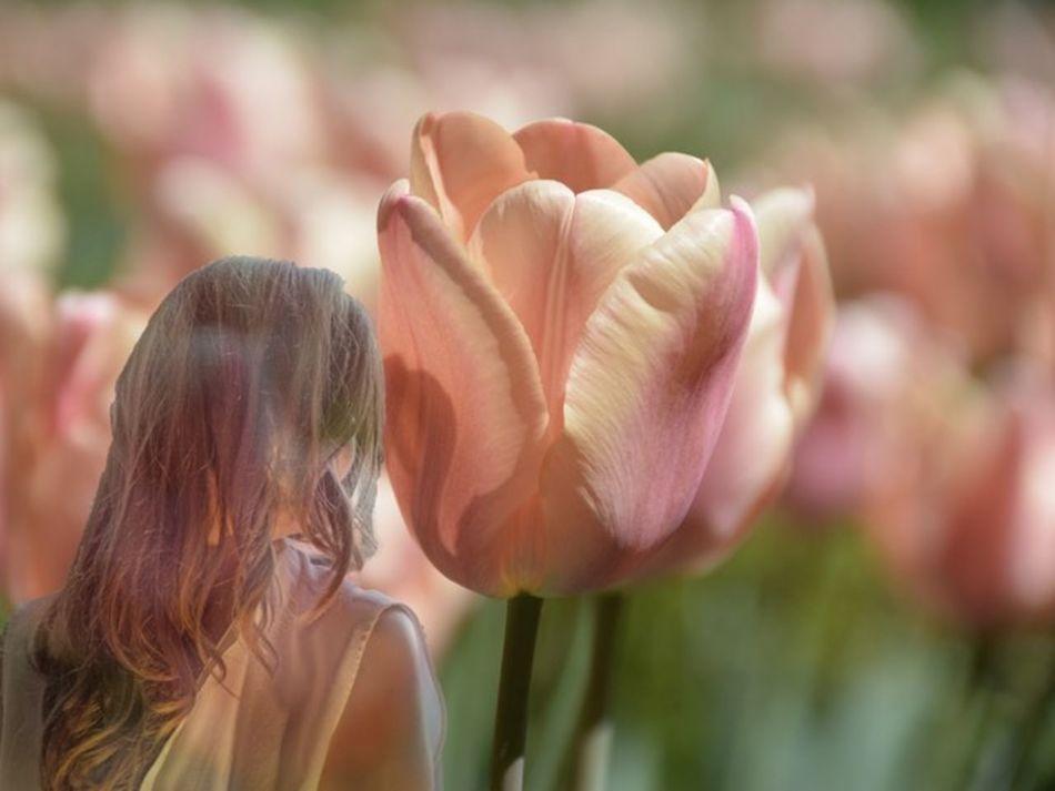 Enjoying Life Universodepequeñascosas EyeEmBestEdits Make Magic Happen Flowers