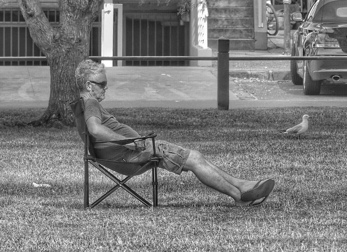 People Photography Street Photography EyeEm Best Shots EyeEm Melbourne EyeEm EyeEm Gallery Eyeemphotography Eyeem People Random People Eye4photography  Chilling Chillout Chilling Outsiide Seagull Sitting Outside Stretching Legs Black And White Monochrome Lazy Day Lazy Afternoon