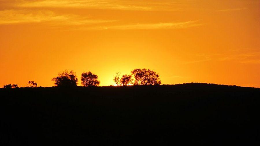 43 Golden Moments in Australia Sunset near Broken Hill