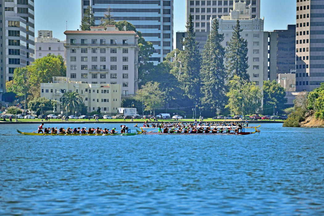 Dragon Boat Racing @ Lake Merritt 1 The Color Of Sport Dragon Boats Racing Lake Merritt Oakland, Ca. Watersports Aquactic Sports Urban Landscape City LifeOffice Buildings Skyscrapers Lakeshore Cars People Walking Around People Watching Water Trees Sports Rowing Rowing Boats Rowing Teams RowingCompetition Outdoors Enjoying Life