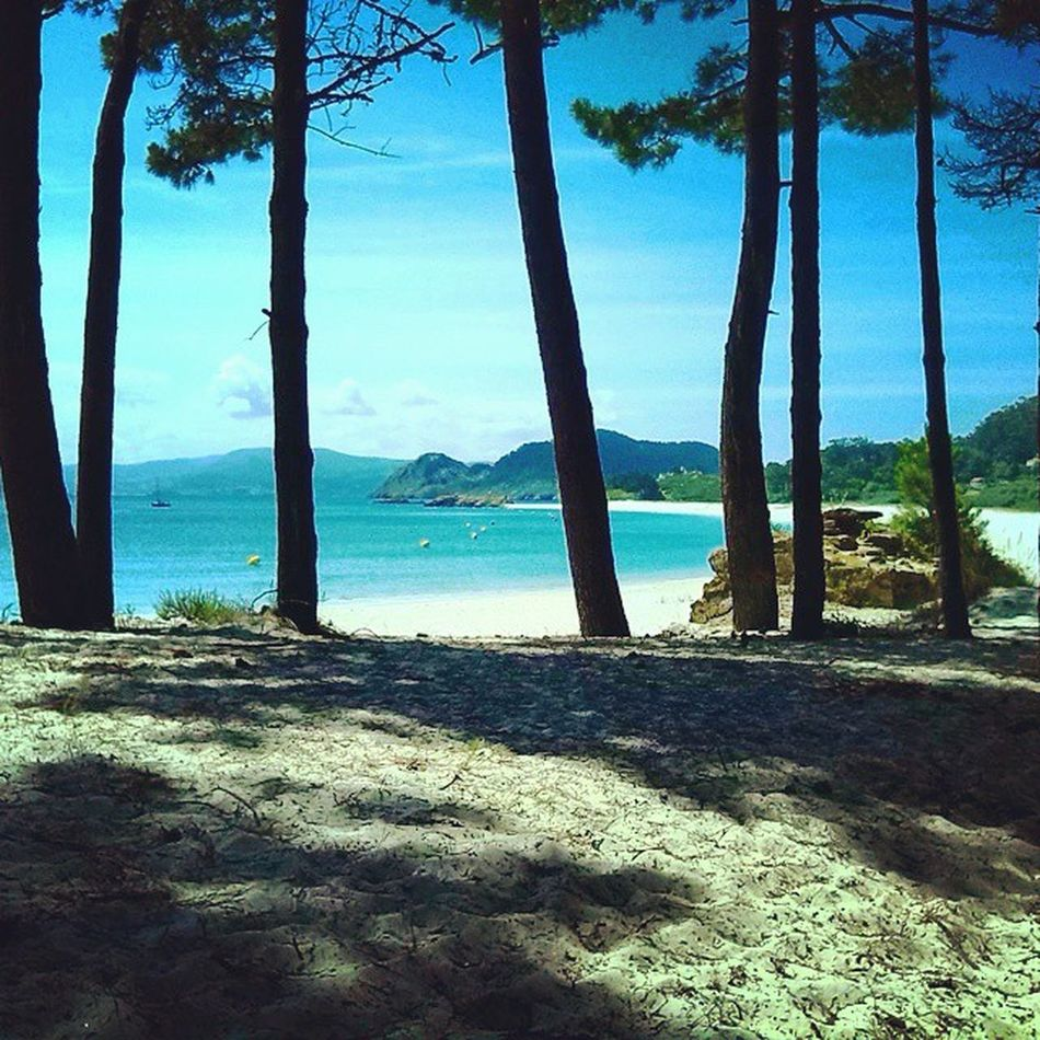 Working Lastsummer Bestplace Nabia Ciesislands Galifornia Riasbaixas Galicia SPAIN Zen Sea Blue Relax Beautifulplace Bestbeachintheworld Cangas Vigo Goodlife WestCoast