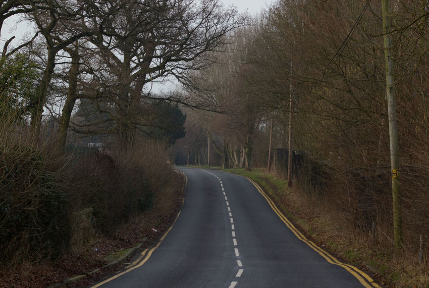 The road leading to Manchester Airport's Runway Visitor Park Tree The Way Forward Nature Road Transportation No People Tranquility Outdoors Curve Beauty In Nature Scenics Day