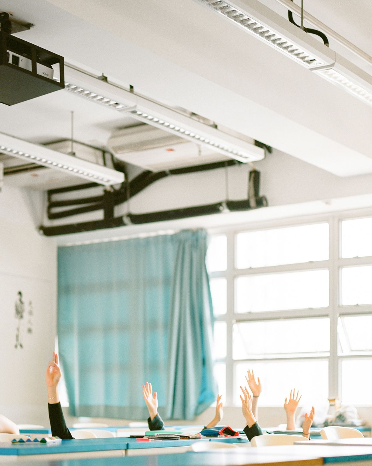 Beautiful stock photos of student, Architecture, Built Structure, Classroom, Cropped