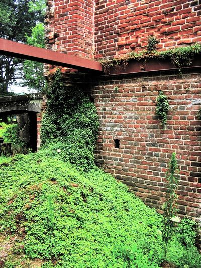 The Ruins of Rosewell Architecture Brick Wall Building Exterior Built Structure Day Exterior Grass Green Color Growing Growth Historical Building House Ivy Nature No People Old Outdoors Plant Residential Structure Rosewell Mansion Stone Wall