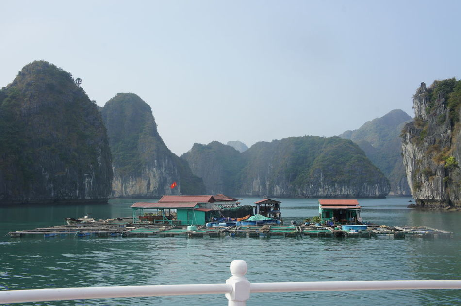 Beauty In Nature Coastline Day Ferry Halong Halong Bay Vietnam Halongbay Harbor Mountain Mountain Range Nature Nautical Vessel No People Outdoors Passenger Craft Pedal Boat Scenics Sea Sky Tranquil Scene Travel Destinations Water