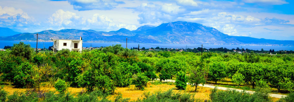 Home Is Where The Art Is Greece Kiato Moutains House Sea And Sky Wires And Cables Orange Trees Lemon Trees Corinthia Landscape Secret Hideaway in Greece